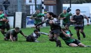 RGC1404 33 CROSS KEYS 13